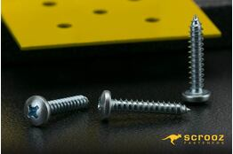 8g x 20mm Self Tapping Screws PAN BZP pack 100